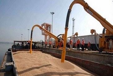 مصر ترفض 18 ألف طن من القمح الروسي