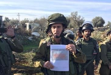 صور| قوات الاحتلال الإسرائيلي تقتلع أشجار الزيتون في قلقيلية