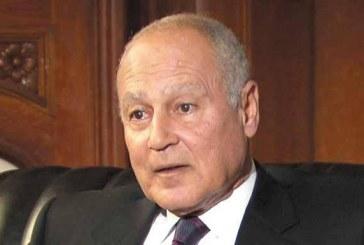 أبو الغيط: الجامعة العربية تم تحييدها في الشأن السوري منذ سنوات طويلة