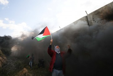 فيديو| القضية الفلسطينية تحتل أولوية في اجتماع وزراء الخارجية العرب اليوم بالأردن