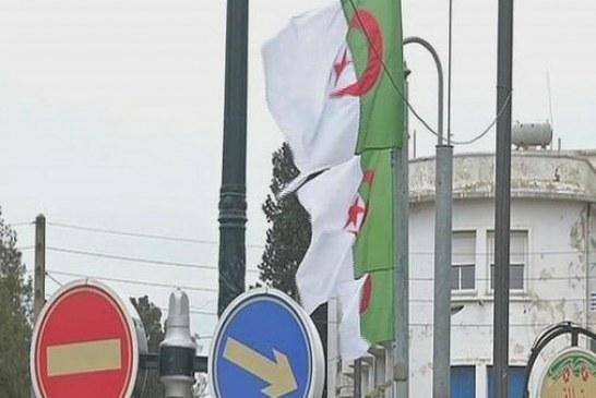 الجزائر.. قيود على السيارات ومنع استيراد الأجبان والشوكولاتة