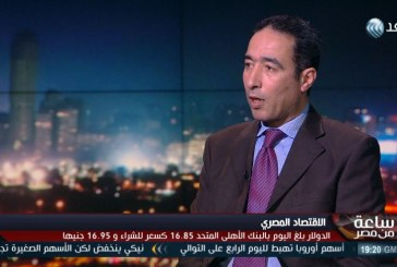 فيديو  خبير اقتصادي: مصر حررت سعر الدولار ولم تعوم الجنيه