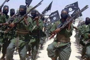 «مرصد الإفتاء»:«بوكو حرام» تستغل ضعف المعرفة الدينية لنشر المناهج المتطرفة