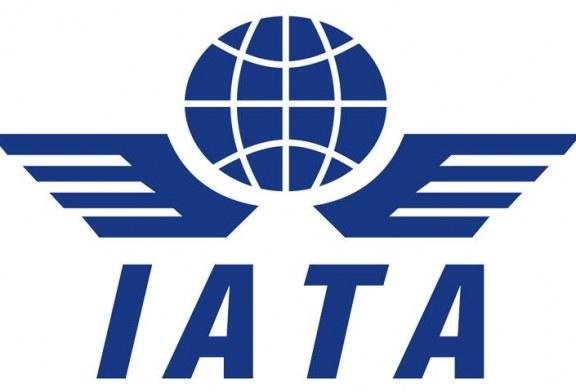 منظمة «أياتا» تعتبر حظر الكمبيوترات في مقصورات الركاب «غير مقبول»