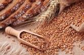ارتفاع أسعار القمح الروسي مع تزايد المخاطر بشأن المحصول الجديد
