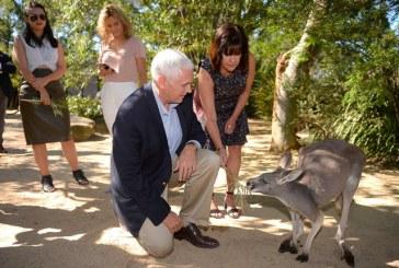 صور| استراحة من عناء الدبلوماسية .. بنس يداعب الحيوانات في حديقة استرالية