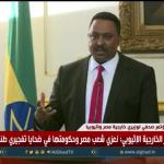 فيديو| وزير الخارجية الإثيوبي: لن نتخذ أي خطوة ضد مصلحة مصر