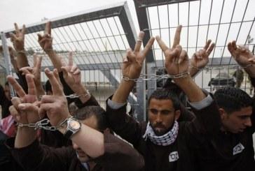 مواجهة مع الجلاد في سجون الاحتلال .. معركة الإرادة رقم 29 بالإضراب عن الطعام
