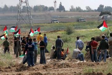 فيديو| استمرار المواجهات بين الاحتلال والمتظاهرين الفلسطينيين على حدود غزة