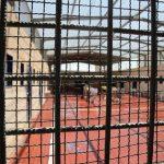 الاحتلال ينقل أسرى مضربين إلى مستشفى ميداني