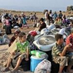 منظمات حقوقيةتطالب الجزائر والمغرب بحل معاناة اللاجئين السوريين على حدوديهما