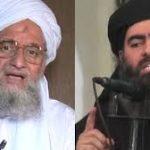 باحث سياسي يحذر من تحالف بين «القاعدة» و«داعش»