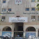 مصر: استمرار نظام فحص واردات الحبوب وسياسة الإرجوت دون تغيير