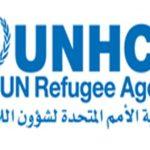 مفوضية اللاجئين: عودة اللاجئين النيجيريين قد تسبب أزمة جديدة