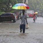 مقتل 24 وتشريد الآلاف جراء أمطار وانهيارات أرضية بولاية كيرالا الهندية