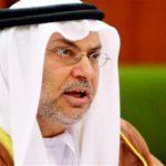 أنور قرقاش:  من الضروري تعزيز الموقف الخليجي الموحد تجاه الخطر الإيراني