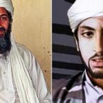 «القاعدة» ينتعش من جديد على أنقاض «داعش»