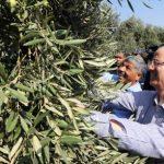 الحمد الله يتهم الاحتلال بتعطيل الاقتصاد الفلسطيني من التطور