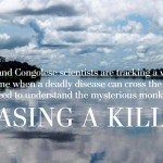 فيروس «جدري القرود» يقتل الأفارقة ويهدد العالم