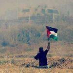صور| الشهيدإبراهيم أبو ثريا.. على هذه الأرض ما يستحق الشهادة