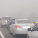 فيديو| نصائح للتعامل مع الطقس في مصر خلال فصل الشتاء
