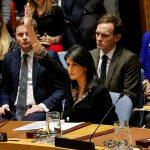 مسؤولة فلسطينية: «الفيتو الأمريكي» هدية لإسرائيل على جرائمها