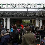 حديقة حيوان لندن تفتح أبوابها من جديد بعد حريق