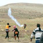 إصابة عشرات الفلسطينيين بمواجهات ضد الاحتلال في الضفة الغربية وغزة