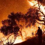 رجال الإطفاء يسيطرون على حرائق غابات كاليفورنيا