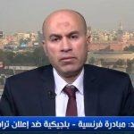 الدسوقي: حل القضية الفلسطينية لا بد أن يأتي من العرب