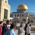 مستوطنون يجددون اقتحامهم للمسجد الأقصى