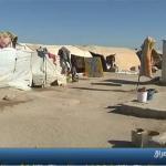 فيديو| إجبار أسر نازحة في الأنبار على العودة لمنازلهم رغم عدم تأمينها