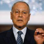أبو الغيط: التدخلات التركية بالمنطقة تمس الأمن القومي العربي