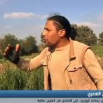 فيديو  صائد تماسيح مصري يساعد قرويين على التخلص من ثعابين سامة