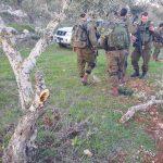 مستوطنون يحطمون أشجار زيتون ويهاجمون منازل الفلسطينيين في نابلس