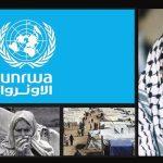 الأونروا : أنقذها «عرفات» 1973..وحملة دولية لإنقاذها 2018