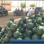 فيديو  البطيخ... الفاكهة المفضلة للمصريين في الصيف