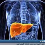 فيديو| دراسة: الإكثار من تناول اللحوم الحمراء يزيد الإصابة بأمراض الكبد