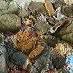 جرائم دولة الاحتلال..من مذبحة «عناقيد الغضب» إلى مجزرة «قانا»