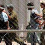 الجامعة العربية تطالب بالضغط على الاحتلال لإطلاق سراح الأسرى