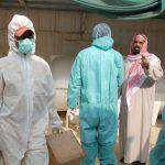 السعودية.. إصابة جديدة بإنفلونزا الطيور وإعدام 11 ألف طائر خلال الـ 24 ساعة الماضية