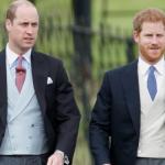 الأمير البريطاني هاري يطلب من شقيقه الأكبر وليام أن يكون إشبينه