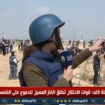 فيديو  مراسلة الغد: الفلسطينيون يستخدمون المناجيق لإلقاء الحجارة على قوات الاحتلال