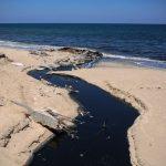 الحكم المحلي بغزة: كارثة بيئية بسبب تلوث مياه البحر