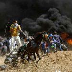 خبراء: «الأسلحة الشعبية» الفلسطينية تربك دولة الاحتلال