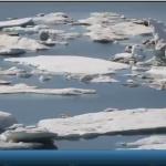 فيديو| ارتفاع نسبة ذوبان الجليد في القارة القطبية الجنوبية