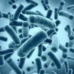 البكتيريا الزرقاء.. وسيلة قد تمكن البشر من العيش على المريخ