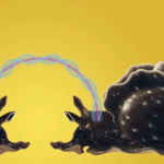 فيديو| تجارب علمية على «حلزون» لعلاج الزهايمر