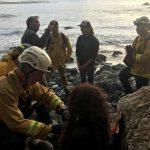 امرأة تظل على قيد الحياة 7 أيام بشرب الماء من رادياتير سيارتها بعد حادث