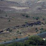 جيش الاحتلال يزعم اكتشاف أول نفق على الحدود الشمالية